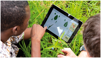 How digital products are fixing problems in agriculture