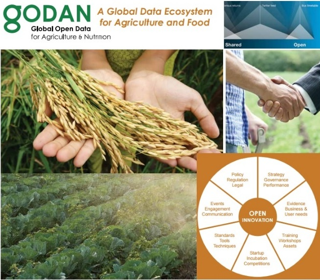 global open data for agriculture nutrition godan agricultural
